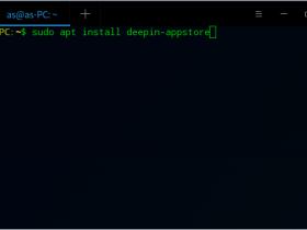 深度linux软件商店安装教程